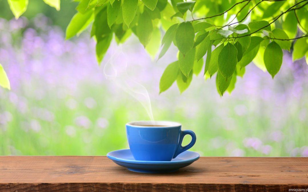Cudowne działanie herbaty
